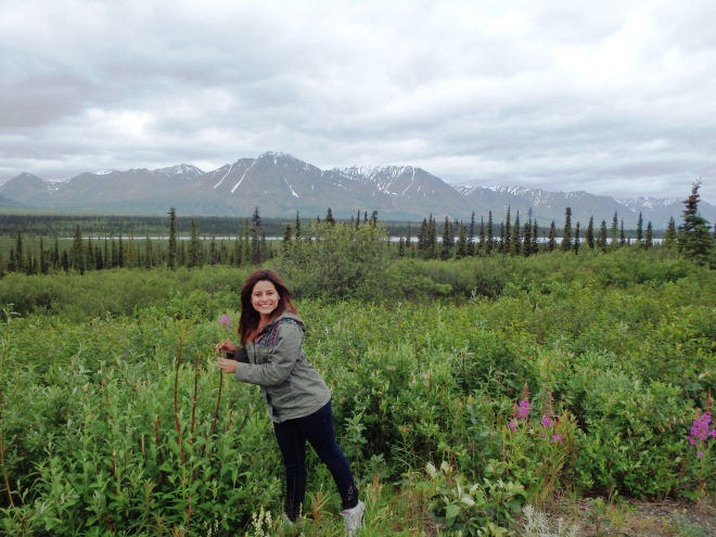 Alaska highway 3