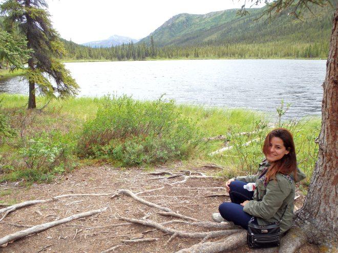 Parque Denali no Alasca