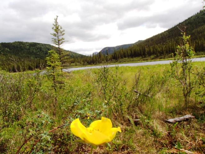 triple lake trail