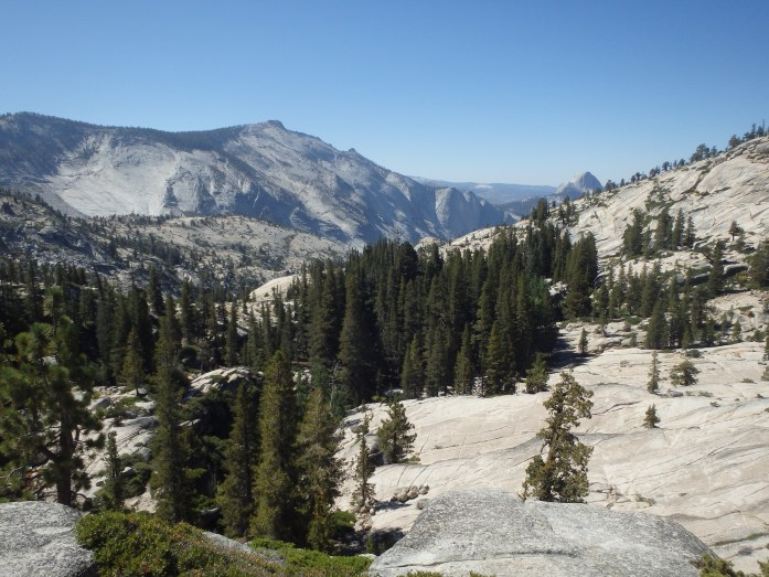 Yosemite Park Tioga Pass